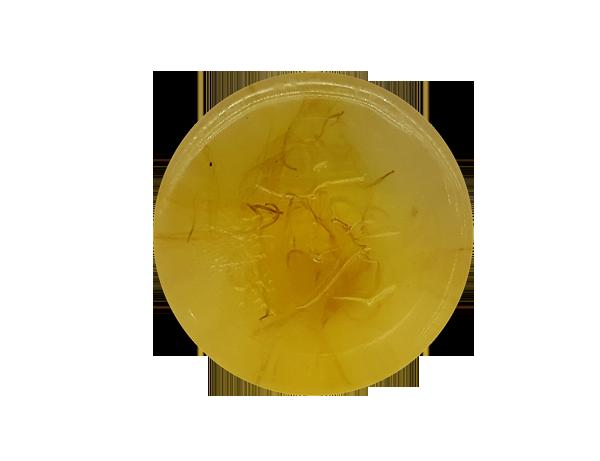 黃 枝 花 4